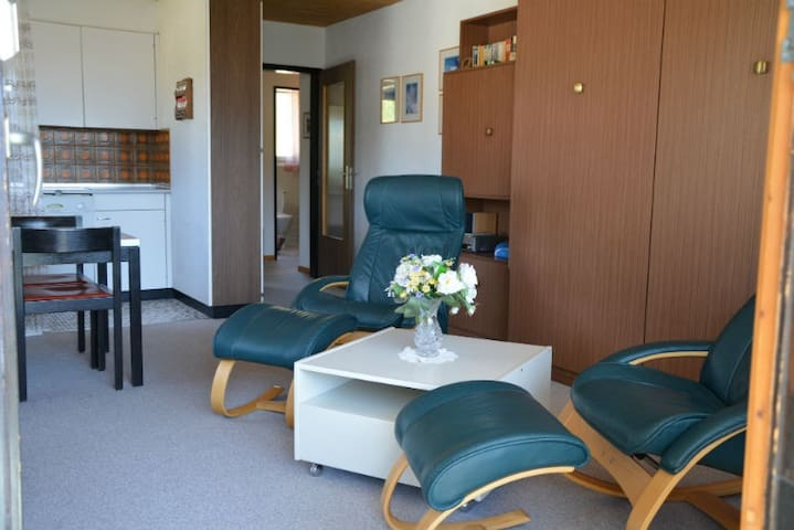 Ferienwohnung Flurina 19 Defuns Brigels, (Breil/Brigels), 65023B, Apartment with Shower/Toilet for max. 4 People