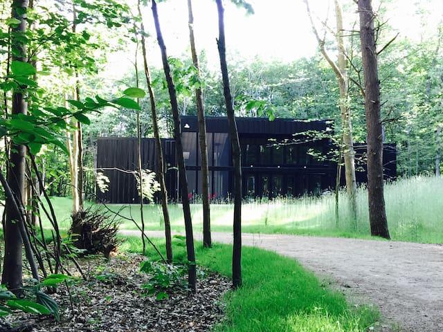 Modern Cabin in the Woods 2 - Fennville - Dom
