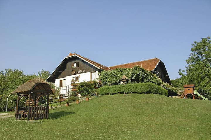 Farm stay by the lake in Prekmurje
