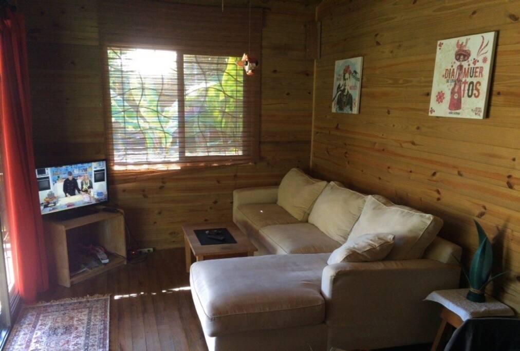 Living room with a big comfortable sofa and flatscreen TV