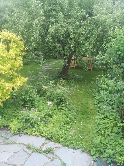 Lummig mysig trädgård