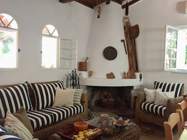 Fireplace and Sitting Recess