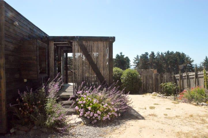 Loft Punta de Lobos