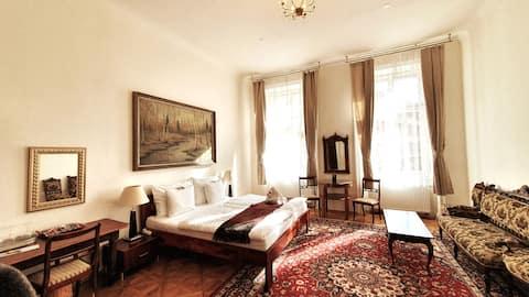 Big, 30m2 beautiful room in the center of Prague