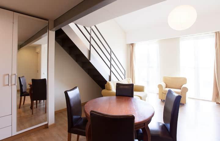 Spacious apartment in Kaunas center
