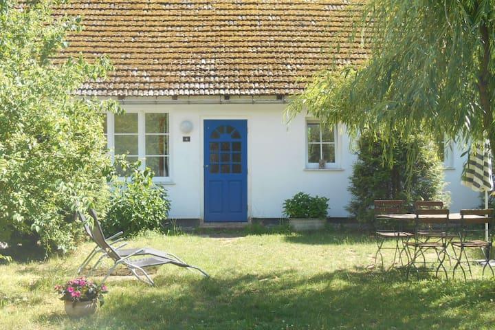 Stechlinsee idyllisches Cottage im Wald 4