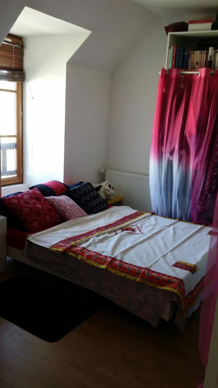 Belle chambre dans une grande maison