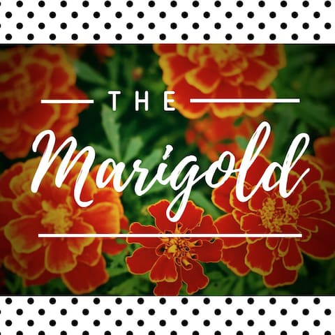 The Marigold in Southtown