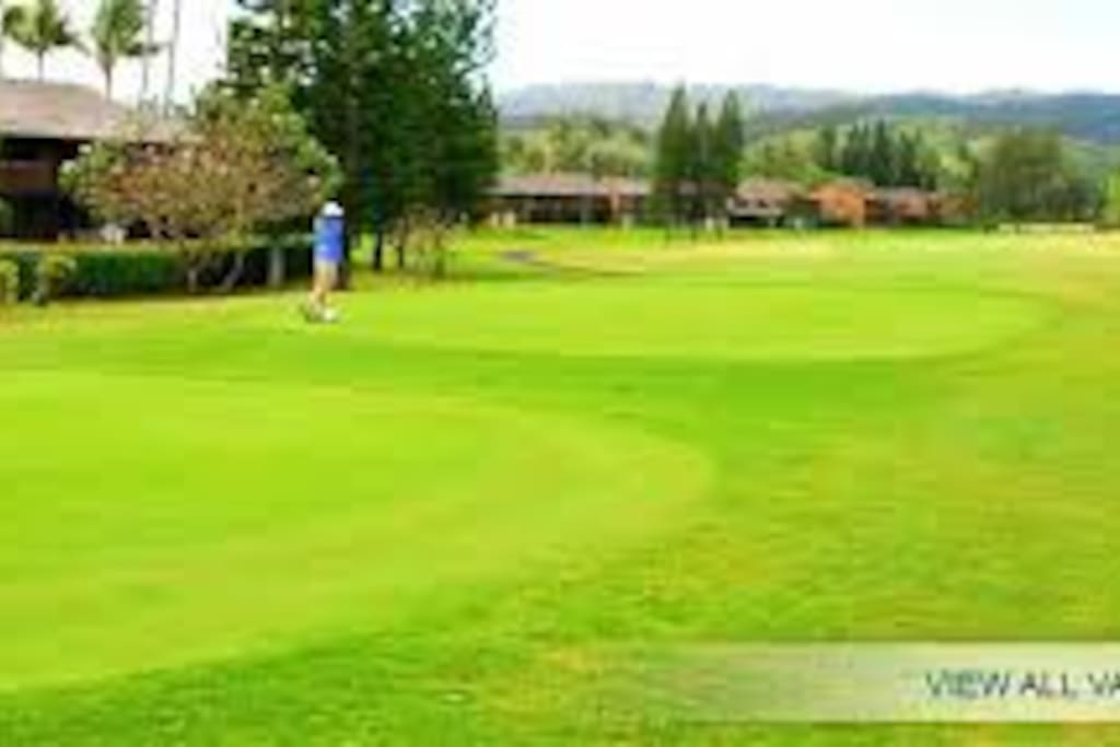 Two golf courses