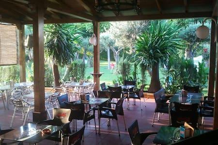 Hostal Restaurante Al-Andalus S.3 - La Carlota - Jiné