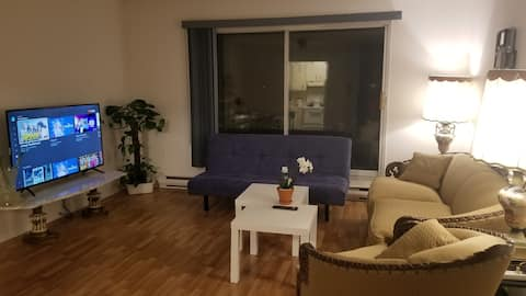 Entire Sunny condo-elevator and  free parking