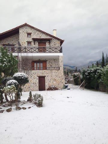 Πέτρινη Μεζονέτα Πολύδροσος Παρνασσού Φωκιδας - Polydrosos - House