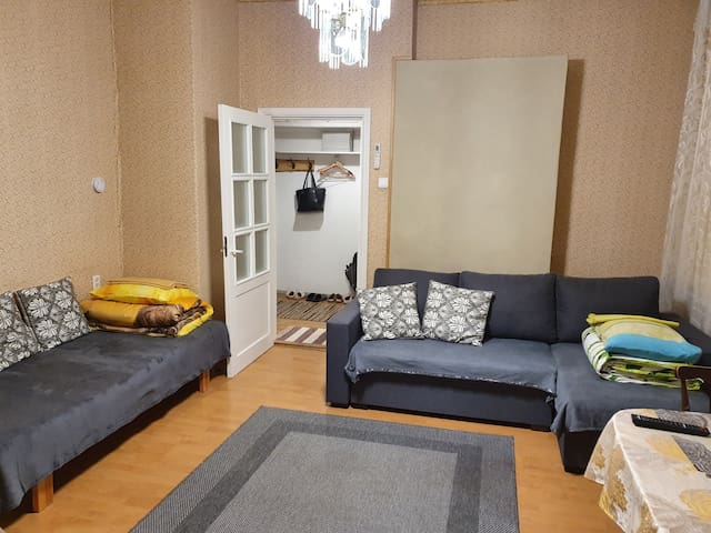 Living room with double sofa bed and single sofa