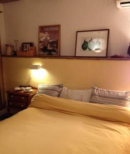 Petite chambre dans grande maison au calme. - Saint-Étienne-de-Baïgorry - House - 1
