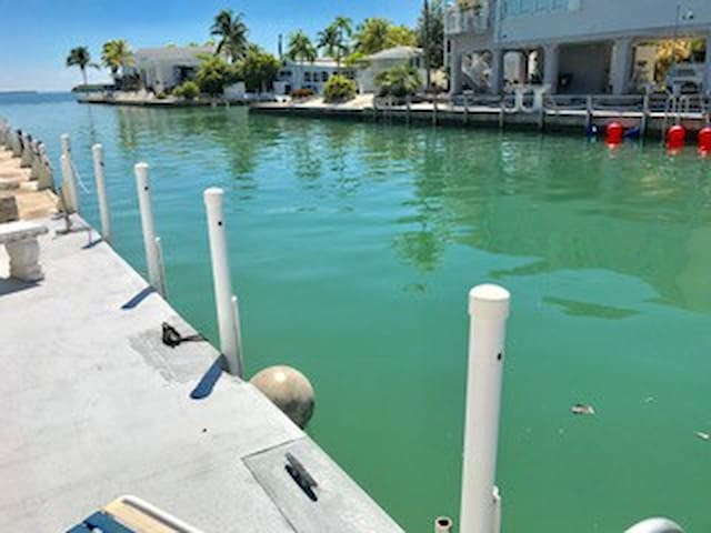 35' seawall on the canal with deep access, perfect for your boat!