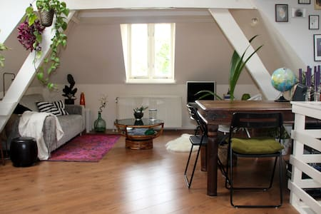 Cute apartment with sunny terrace in city centre - Den Haag - Apartment