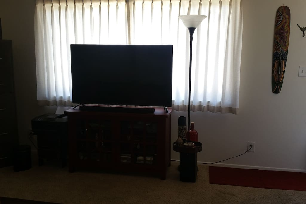 """Living room 55"""" HDMI TV with DIshNetwork & a Smart Blu-Ray DVD player (Netflix, Pandora, and more)"""