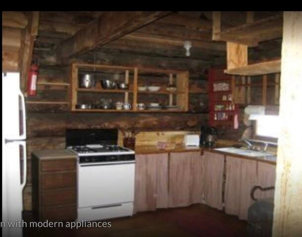 Modern appliances in a rustic setting