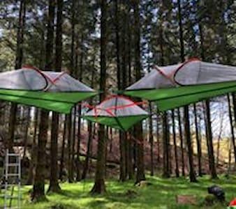 Wicklow Wilderness Adventure Treetent Camps for 2