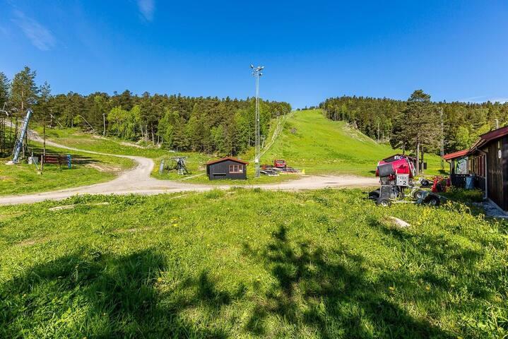 Et par hundre meter i luftlinje fra boligen ligger Oslo Skisenter aka Grefsenkleiva