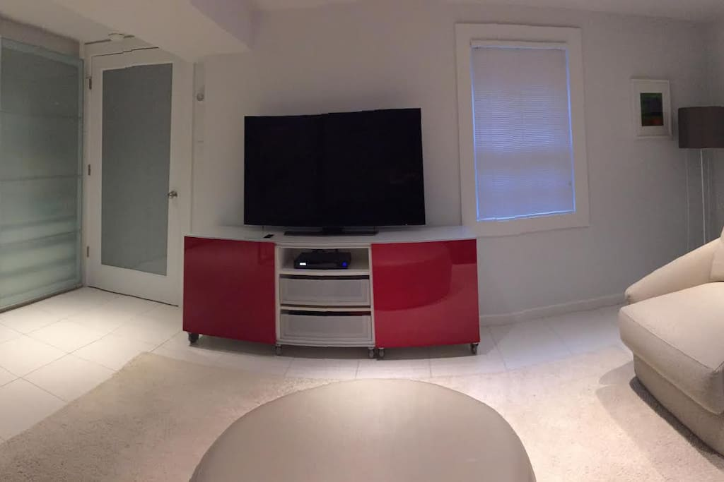 Large TV and closet in the living room