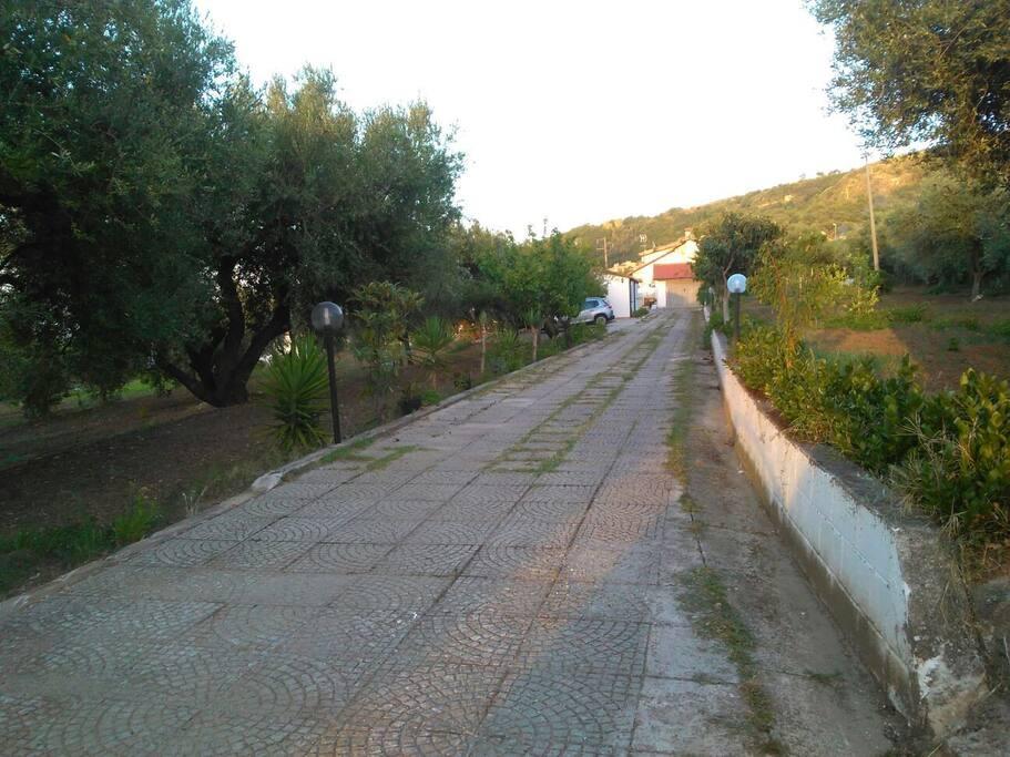 viale d'ingresso