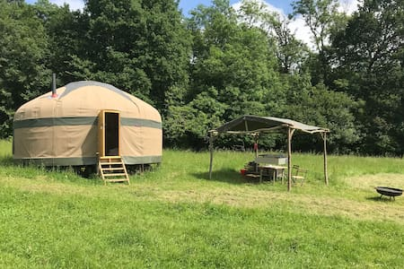 Oak - Large Woodland Yurt on Organic Dairy Farm