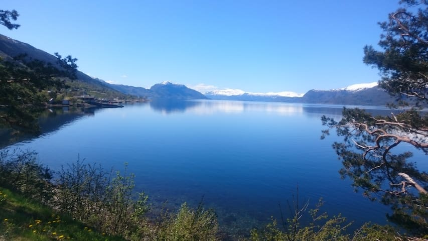 Fjords and Fruit, great surrounding - Utne - Huis