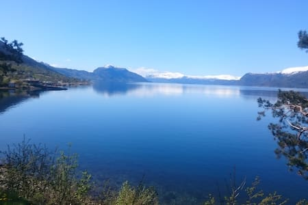 Fjords and Fruit, great surrounding - Utne