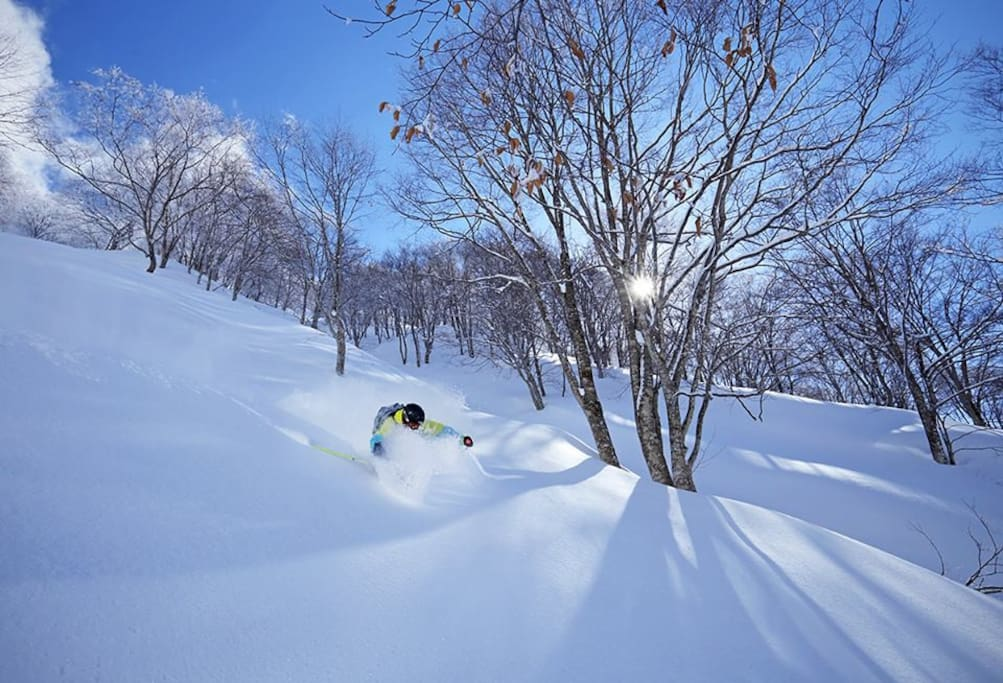 Nozawa Onsen Resort at your doorstep