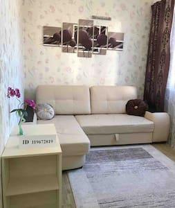 Квартира в Сочи (Адлер)