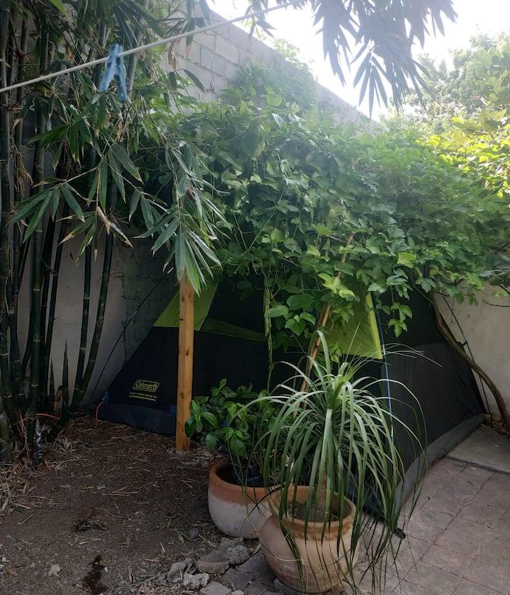 Acampada en el Jardín de Bambú, ubicación centrica