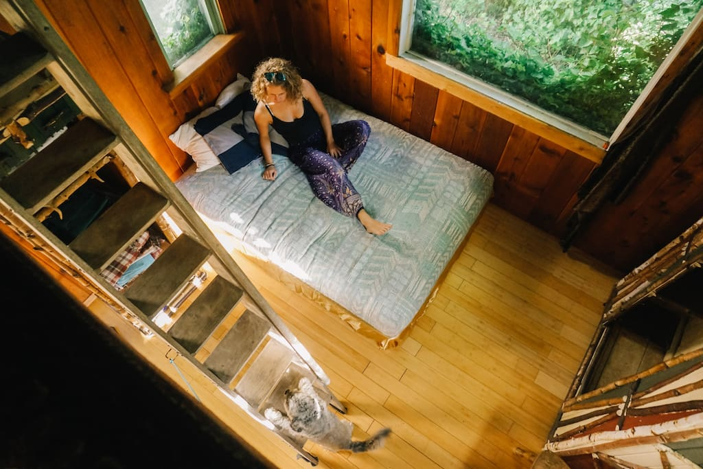 Looking down from the loft in the Ivy Cabin. Photo courtesy of Ann Nguyen & Hipcamp ⛺️