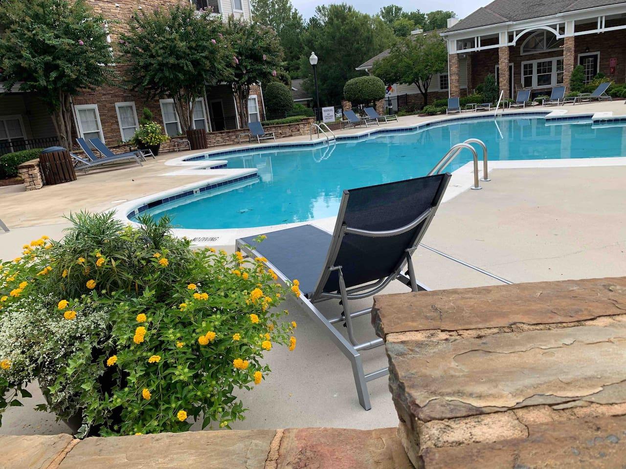 Beautiful Clean Pool area