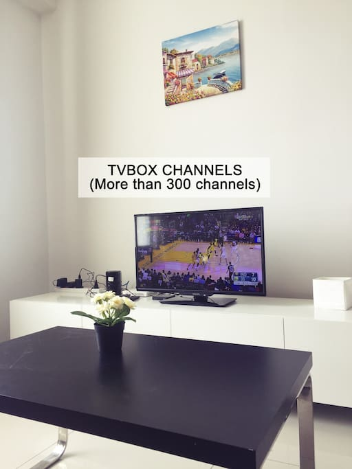 TVBOX Channels with 100mbps wifi