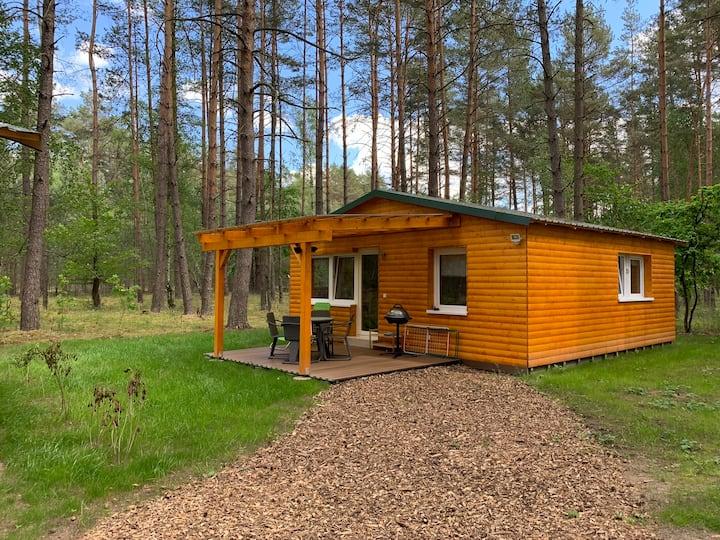 Ferienwald Kastaven Ihre Auszeit in der Uckermark