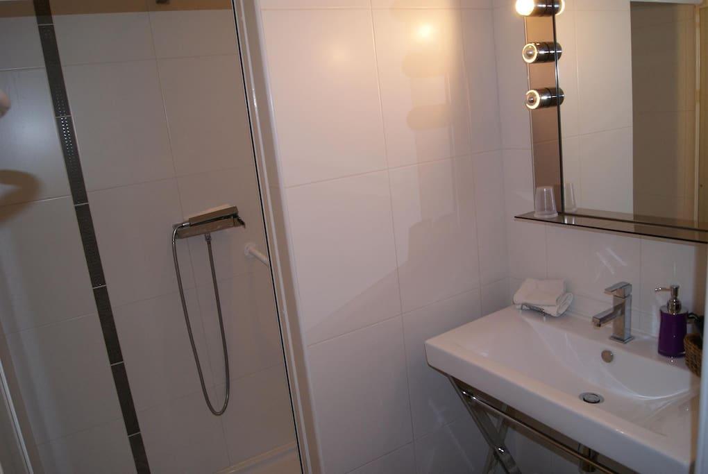 salle douche avec toilettes privée