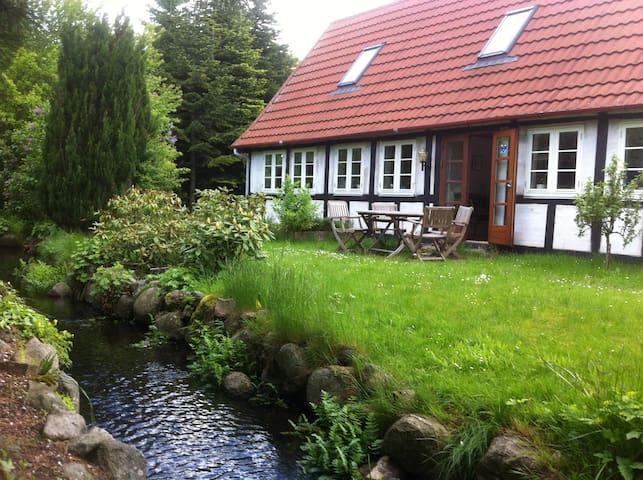 roligt landhus ved naturperle - Davinde - Hus