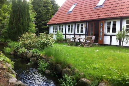 roligt landhus ved naturperle - Davinde - Дом