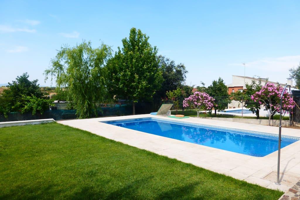 Preciosa casa rural con piscina casas en alquiler en for Casas rurales con piscina en castilla la mancha