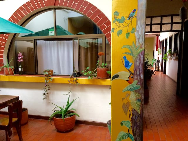 Hostel Caracol - a great stay in historic Popayan!