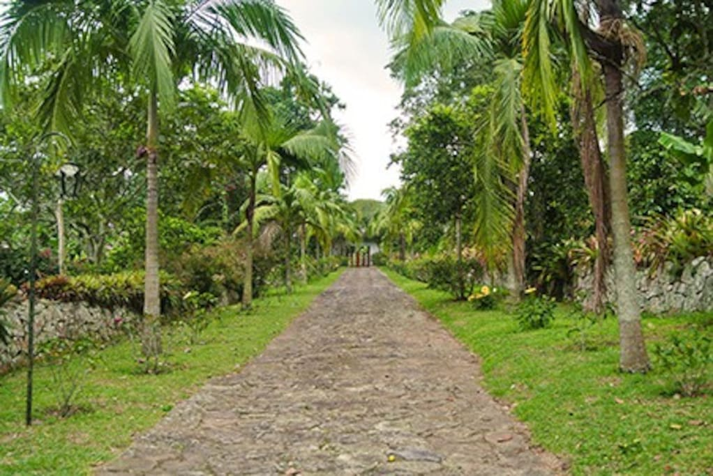 Camino principal