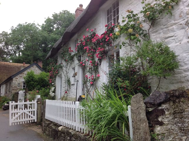 A beautiful thatched cottage - Cornwall - Rumah