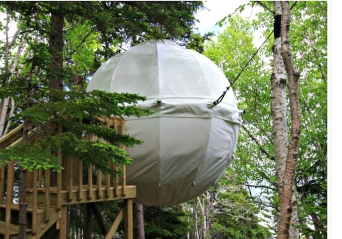 Clearview Treehouse Cocoon
