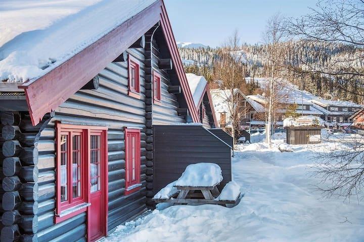 Viking Lodge - Perfect location!