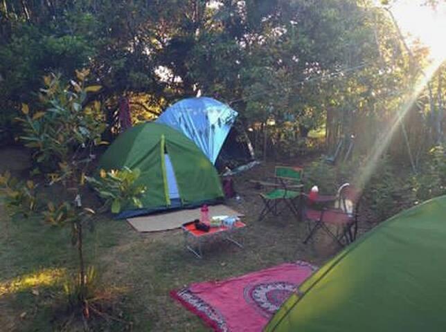 Acampamento Ecológico YogaMeditação @tenda_da_lua