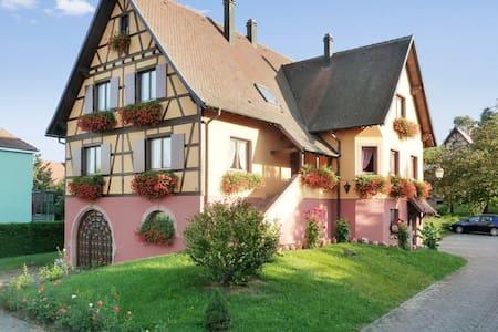 Grande maison avec jardin aménagé - Epfig