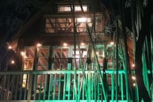 Shooting a music video with Trey Songz. Production lit up the bamboo with green lights.