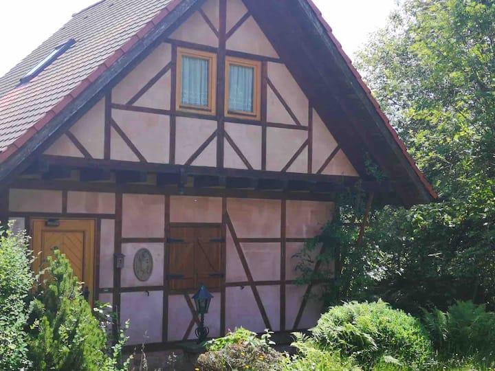 Ferienhaus, tänzelndes  Pony, Pfälzer Wald,2-4 P