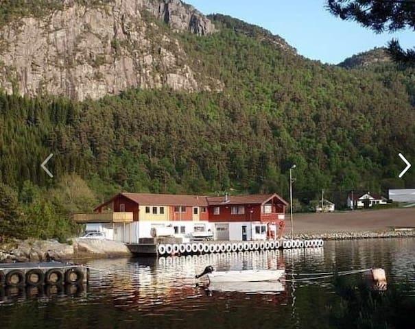 Preikestolen, sjø, fiske, turmuligheter